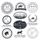 Perfect horse related business symbols with antique texture