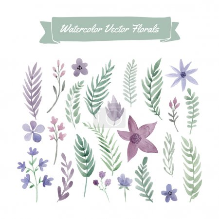 Illustration for Set of handpainted watercolor vector flowers and leaves. Design element for summer wedding, spring congratulation card. Perfect floral elements for save the date card. Unique artwork for your design. - Royalty Free Image