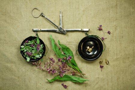 Photo pour Herbes sèches pour une utilisation en médecine douce.Médecine à base de plantes, phytothérapie herbes médicinales.Pour la préparation de perfusions, décoctions, teintures, poudres, onguents, thé.Toile verte de fond - image libre de droit