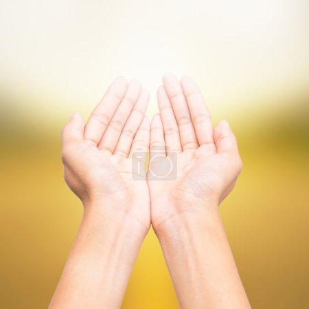 Human open empty hands, over blurred nature background