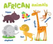 Set of funny african animals