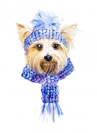 Dog in a knitted cap and a scarf.