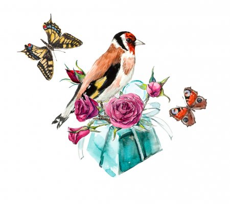 Gift with flowers and birdies and butterflies.