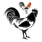 Vector illustration : Rooster on a white background