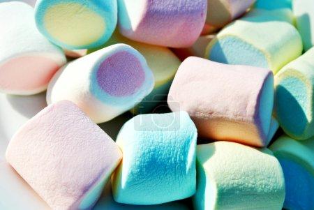 Colourful Marshmallows in the Summer Sun...