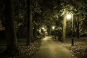 Park Night Scenery
