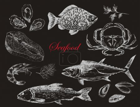 Illustration for Vector salmon steak hand drawn illustration with rosemary and pepper - Royalty Free Image