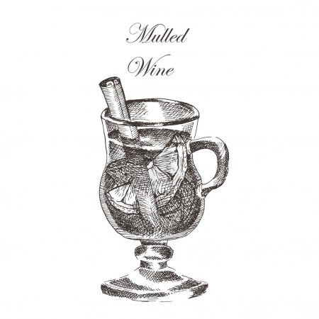 vector hand drawn ink sketch of mulled wine, cinnamon, anise. detailed food drawing for autumn illustration