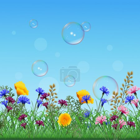 Lawn with colorful flowers and herbs