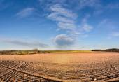 Spring farmland with plowed field