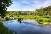 River in spring landscape