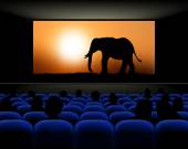 Cinema hall with rows of blue seats spectators and screen with movie about elephants - vector illustration