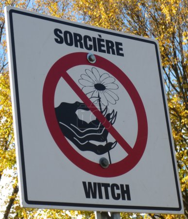 Road or park sign for Halloween saying that witch are not alowed to pick flowers in this park
