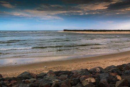 Seagull On The Sunset Beach