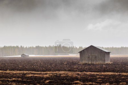 Snowing On The Fields And Barns