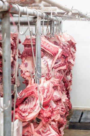 Photo pour Produits de boucherie. Traitement suspendu dans l'abattoir sur l'industrie de la viande de porcs - image libre de droit