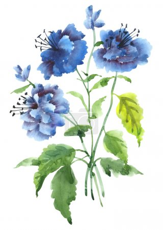 Photo for Summer blue flowers, watercolor illustration - Royalty Free Image