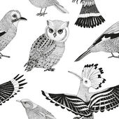 Vector hand drawn seamless pattern with wild birds