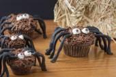 Chocolate Cupcake Spiders