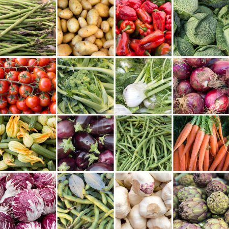 Collage of 16 fresh vegetables