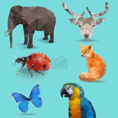 Animal Polygon