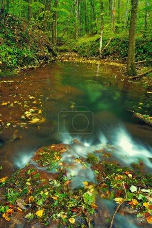Mountain waterfall in late Autumn
