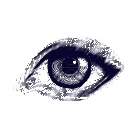 Illustration for Vector illustration of human eye in vintage engraved style - Royalty Free Image