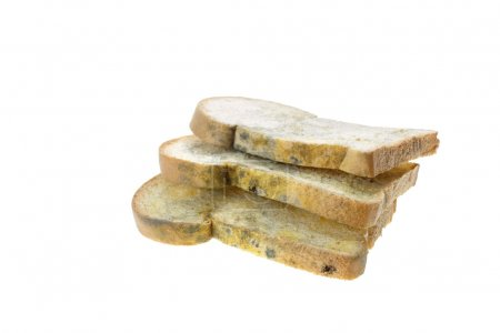 Close up stack of moldy bread isolated on white ba...