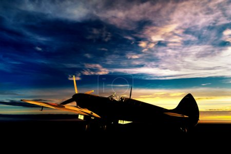 Supermarine Spitfire 3D model on ground dusring su...