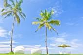 Slunečník a sytosti křesel v Tropical Beach Hotel, který se nachází v pobřežní oblasti Negambo, Srí Lanka