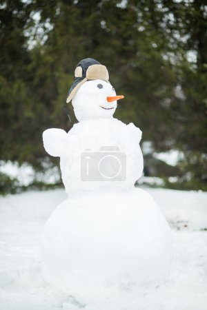 Funny snowman in forest