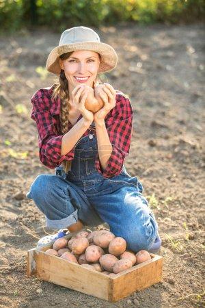 Vegetable garden potato