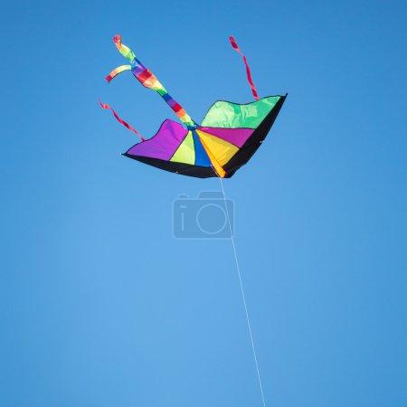 Photo pour Cerf-volant dans le ciel bleu - image libre de droit