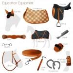 Set of equestrian equipment for horse. Saddle, bri...