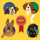 Set of different dog breeds