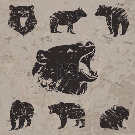 Illustration pour Ensemble de différents ours avec un design grunge. Illustration vectorielle - image libre de droit
