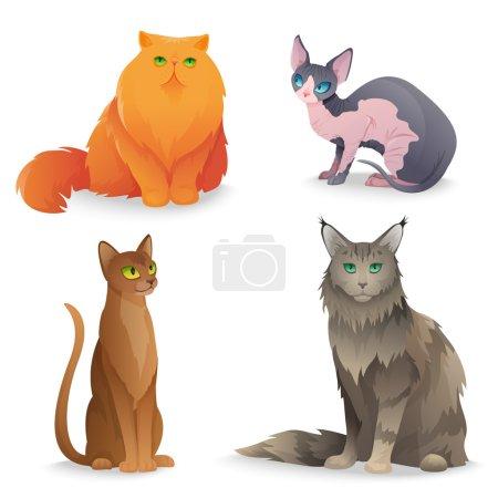 Cat Breeds set