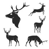 Set of black forest deer silhouettes Suitable for logo emblem pattern typography etc Isolated black on white background