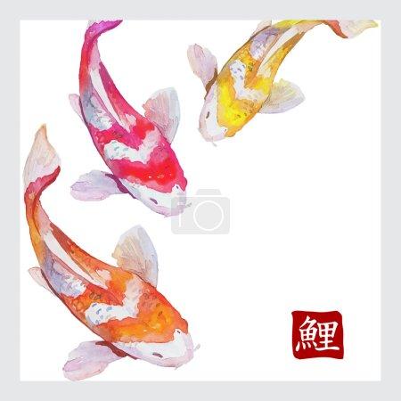 Illustration for Japanese watercolor carps koi swimming. Vector format. Calligraphic simbol of carp - Royalty Free Image