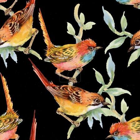 Wild birds and flowers