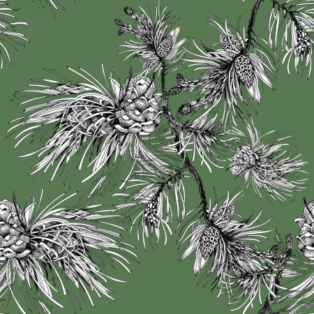 Photo pour Branchement de pin avec l'illustration de cônes d'isolement sur le fond vert - image libre de droit