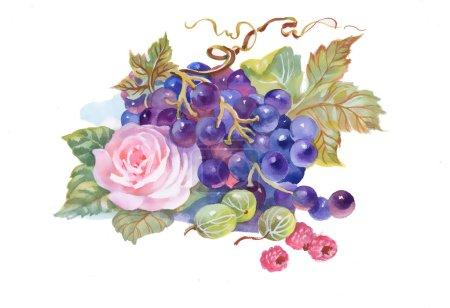 Photo pour Peinture aquarelle dessinée à la main de raisin et de fleur - image libre de droit