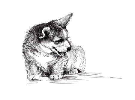 Photo pour Chien chiot illustration dessinée à la main croquis - image libre de droit