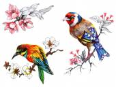 Bright birds on branches with flowers