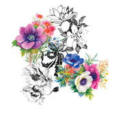 Blooming beautiful flowers illustration