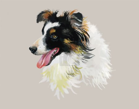 Border Collie Animal dog watercolor illustration isolated on white background vector