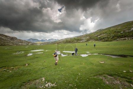 Photo pour Quatre promeneurs et un chien collie marchent près du lac de Nino en Corse avec un ruisseau serpentant à travers une plaine verte au premier plan et des nuages sombres et des montagnes enneigées en arrière-plan - image libre de droit