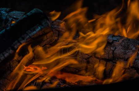 Fire, charcoal, temperature, flame, embers, burning, wood, bonfire, ash, campfire, orange, yellow
