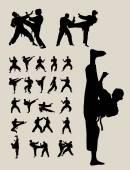 Taekwondo a Karate siluety