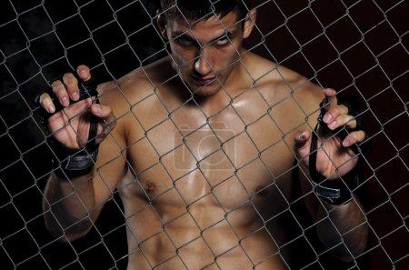 Mix Martial Arts Fighter MMA